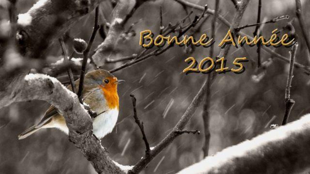 Bonne Année 2015 a